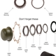 MB GPW , Wheel Bearing Diagram ,Vintagejeeps RFJP G503 MB GPW,Jeep